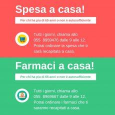 SPESA E FARMACI A CASA